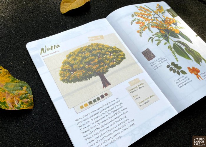Philippine Forest Blooms Native Flowering Trees Planner