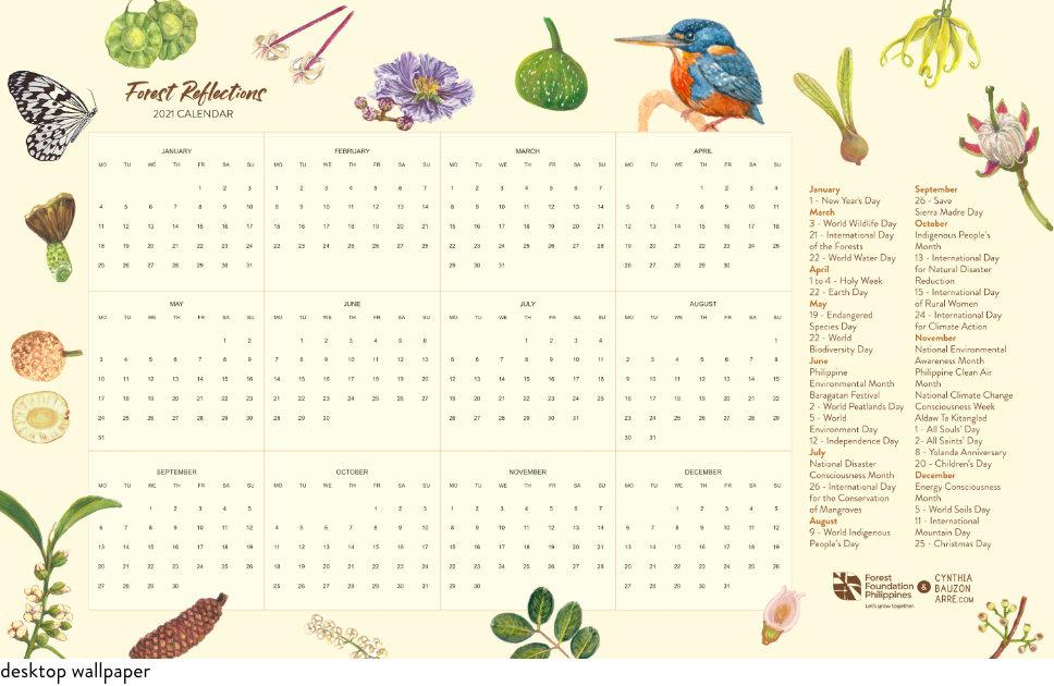 Forest Reflections Wallpaper Environmental Calendar