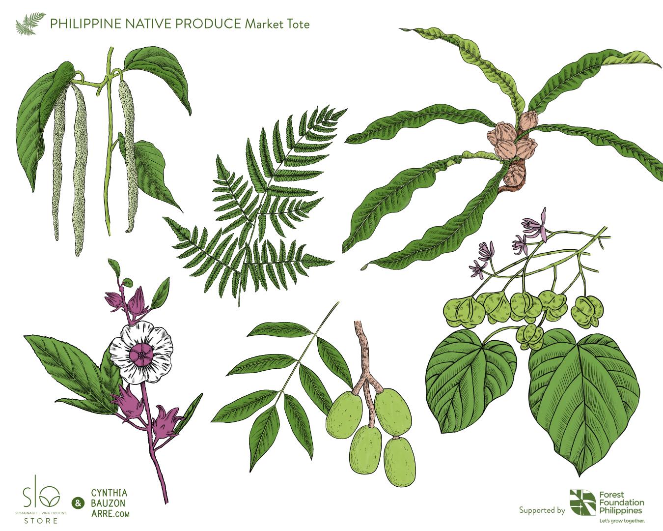 Philippine native food-bearing plants